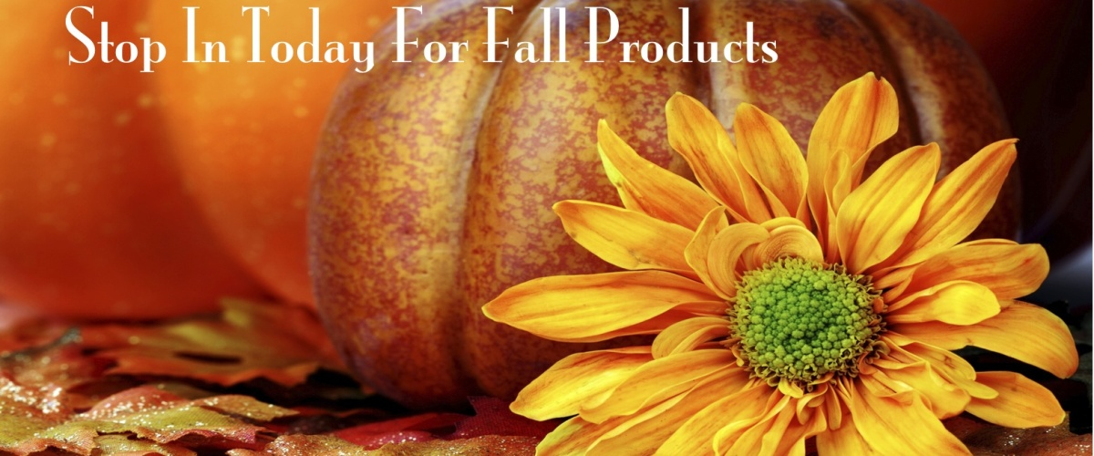 fall products