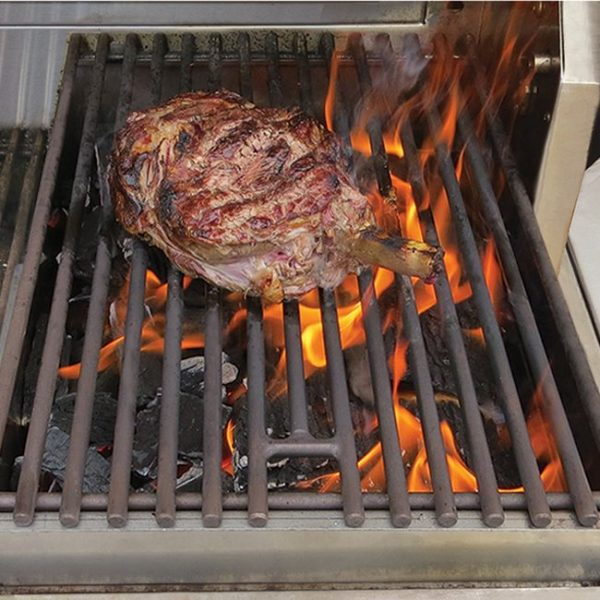 alfresco grills charcoal insert